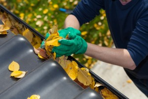 http://www.dreamstime.com/stock-photography-cleaning-rain-gutter-autumn-horizontal-image44931082