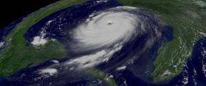 hurricanes-6194