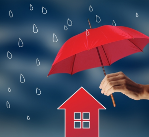 The Protect House From Water Damage Forecast