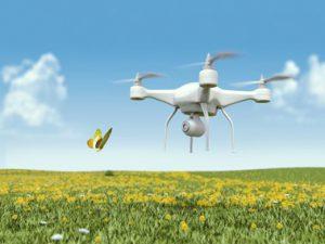 drone-flying-field
