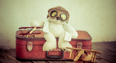 teddy-bear-travel