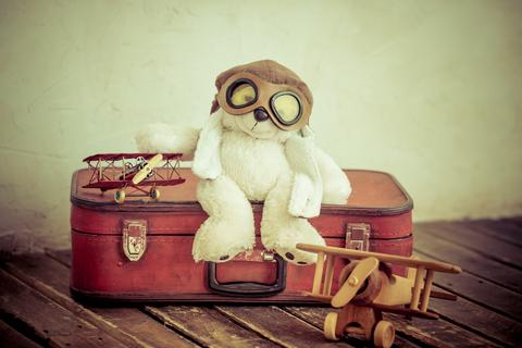 teddy-bear-travel