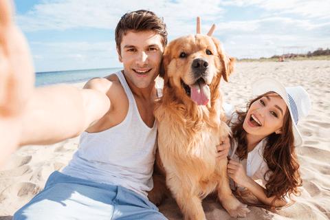 couple-dog-beach-compressor